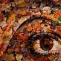 Eye Of Autumn by Joe Bonita