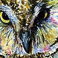 Eyes Of Owl's 13 by John D Benson