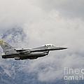 F-16 Fighting Falcon by Dennis Hammer