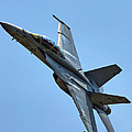 F-18 Hornet by Alan Hutchins