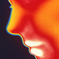 Face Thermogram by Tony Mcconnell