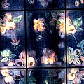 Faded Dogwood Window Dressing by Judyann Matthews
