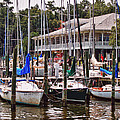 Fairhope Yacht Club Sailboat Masts by Michael Thomas