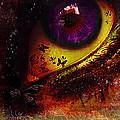 Fairy Eye by Yvon van der Wijk