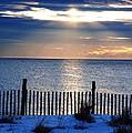 Hope Is On The Horizon by Daniel Diaz