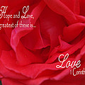 Faith Hope Love Rose by Robyn Stacey