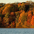 Fall Abounds by Cathy Smith