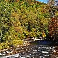 Fall Along Elk River by Thomas R Fletcher