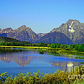 Fall At Oxbow Bend by Robert Bales