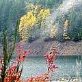 Fall At The Lake by Linda Hutchins