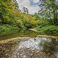 Fall At The Low Stream by Paul Brooks