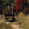 Fall Bench Dreams by LeeAnn McLaneGoetz McLaneGoetzStudioLLCcom