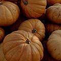 Fall Bounty by LeeAnn McLaneGoetz McLaneGoetzStudioLLCcom