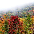 Fall Color Panoramic by Thomas R Fletcher