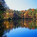 Fall Colors by David Campbell
