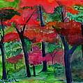 Fall Colors by Michael Brennan