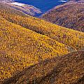 Fall Colours Along Top Of The World by Yves Marcoux