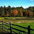 Fall Field - Greeting Card by Mark Valentine