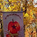 Fall Flag 1 by Douglas Barnett