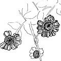 Fall Flowers by Elizabeth Thorstenson