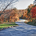 Fall Foliage On The Blue Ridge Parkway by James Woody