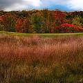 Fall Golf by Jarrod Erbe