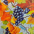 Fall Grapes by Carole Powell