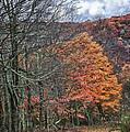 Fall Hiking Near Mountain Lake by James Woody