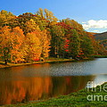 Fall In New York State by Mark Gilman
