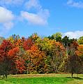 Fall In North Carolina by Sheila Kay McIntyre