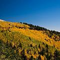 fall in Ruidoso by Ralf Kaiser