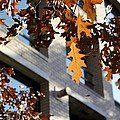 Fall In The City 3 by Alanna DPhoto