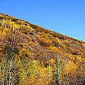 Fall In The Mountains by Doug Lloyd