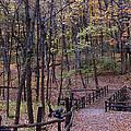 Fall In Yellowsprings by Tina Karle