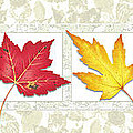 Fall Leaf Panel by JQ Licensing