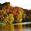 Fall On The Pond by Kim Hymes