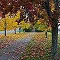 Fall Park by Jeff Galbraith
