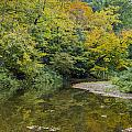 Fall Reflection Pool by Paul Brooks