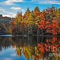 Fall Reflection by Ronald Lutz
