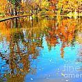 Fall Reflections by Ana Maria Edulescu