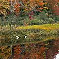 Fall Reflections by Glenn Gordon