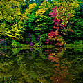 Fall Reflections by Michael Pope