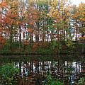 Fall Reflections by Mike Stouffer