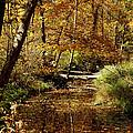 Fall River Colors by LeeAnn McLaneGoetz McLaneGoetzStudioLLCcom