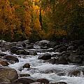Fall River by Doug Lloyd