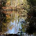 Fall River Undertones by LeeAnn McLaneGoetz McLaneGoetzStudioLLCcom