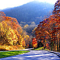 Fall Road 2 by Duane McCullough