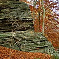 Fall Rock by Meandering Photography