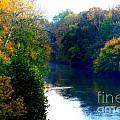 Fall Time Creek by Lori Work