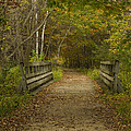 Fall Trail Scene 24 by John Brueske